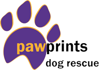 Pawprints Dog Rescue are looking for a Canine Behaviourist and Trainer