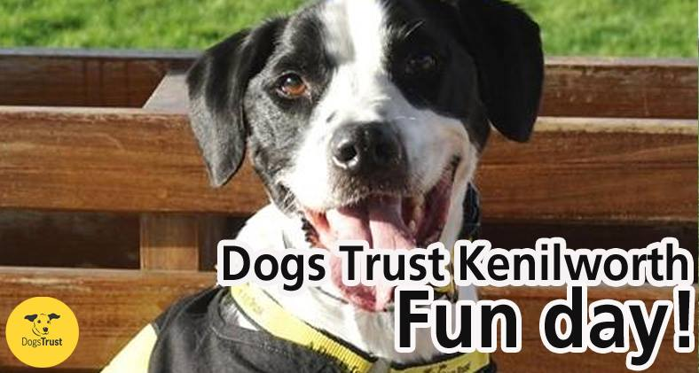 Pawprints Dog Rescue will be at Dogs Trust Kenilworth Fun Day on Sunday 16/06/2019