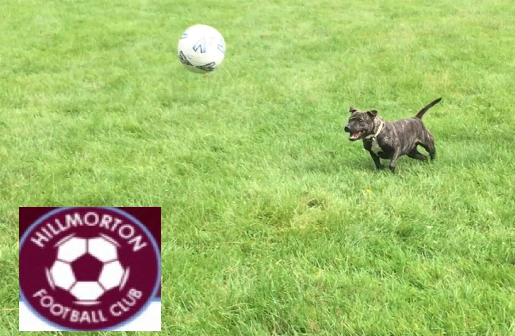 Hillmorton Football Club ‏supports Pawprints Dog Rescue by donating old and used Footballs