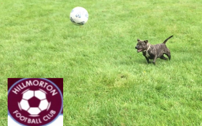 Hillmorton Football Club supports Pawprints Dog Rescue by donating old and used Footballs