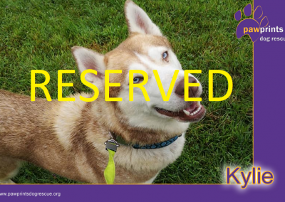 kylie reserved